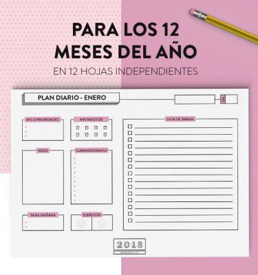 Planificador diario por objetivos